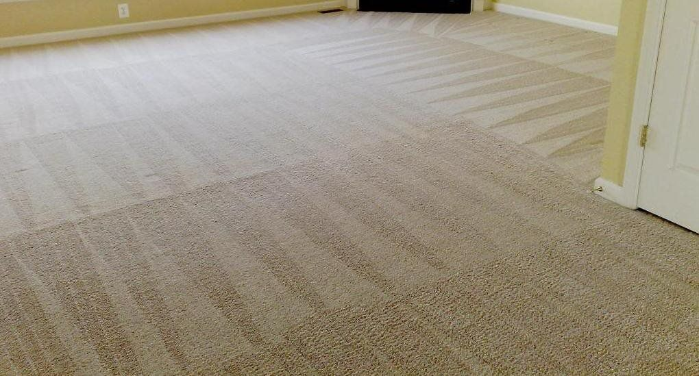 Contact Carpet And Upholstery Cleaners David Sons