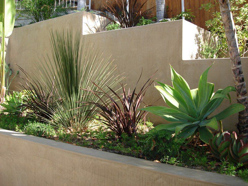 Picture build los angeles best landscape designers los for Best landscape designers