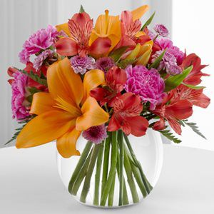 Look No Further Than Potratz Floral Shop Greenhouses In Erie PA For Birthday Flowers And Happy Gifts Liven Up Any Party With A Festive