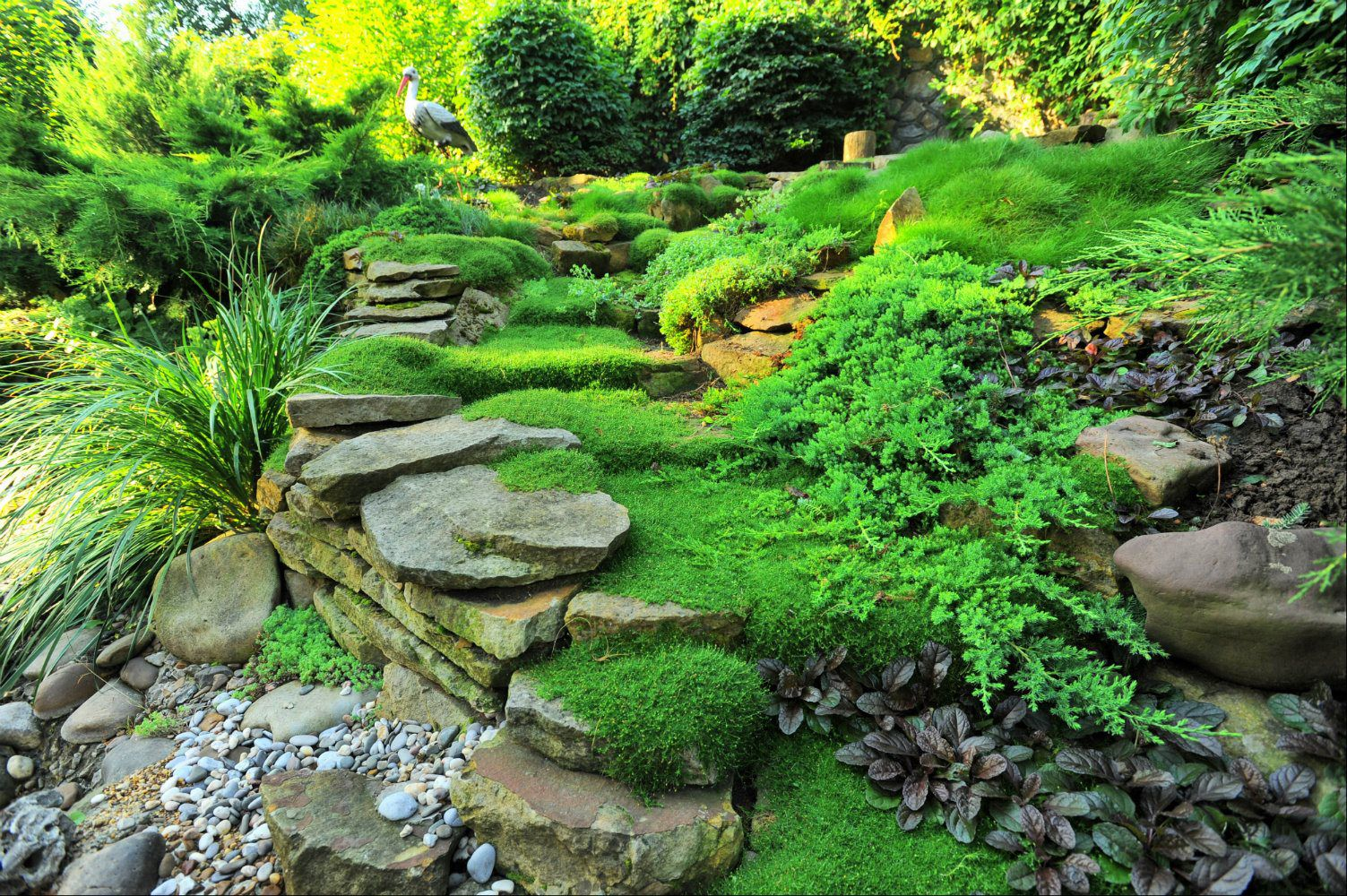 Home - California Roots Landscaping and Design
