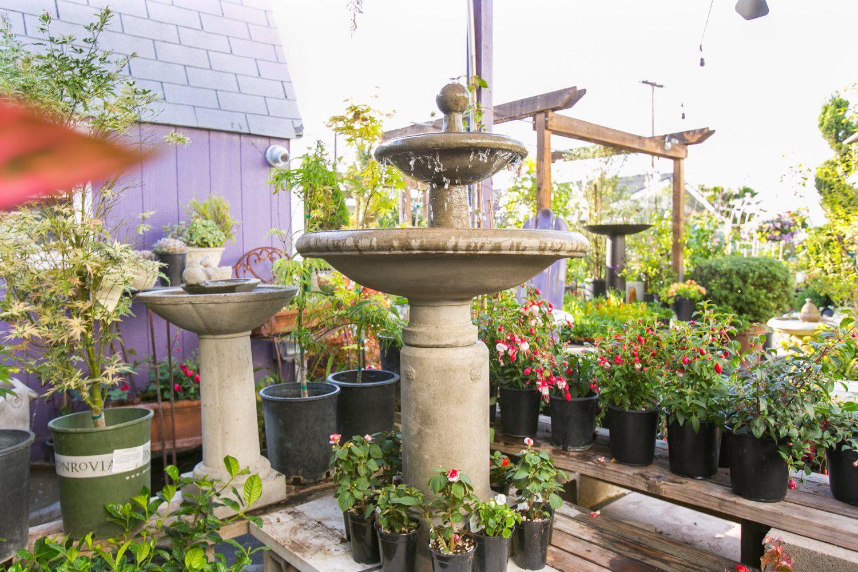 Home alford 39 s english gardens for English home garden design