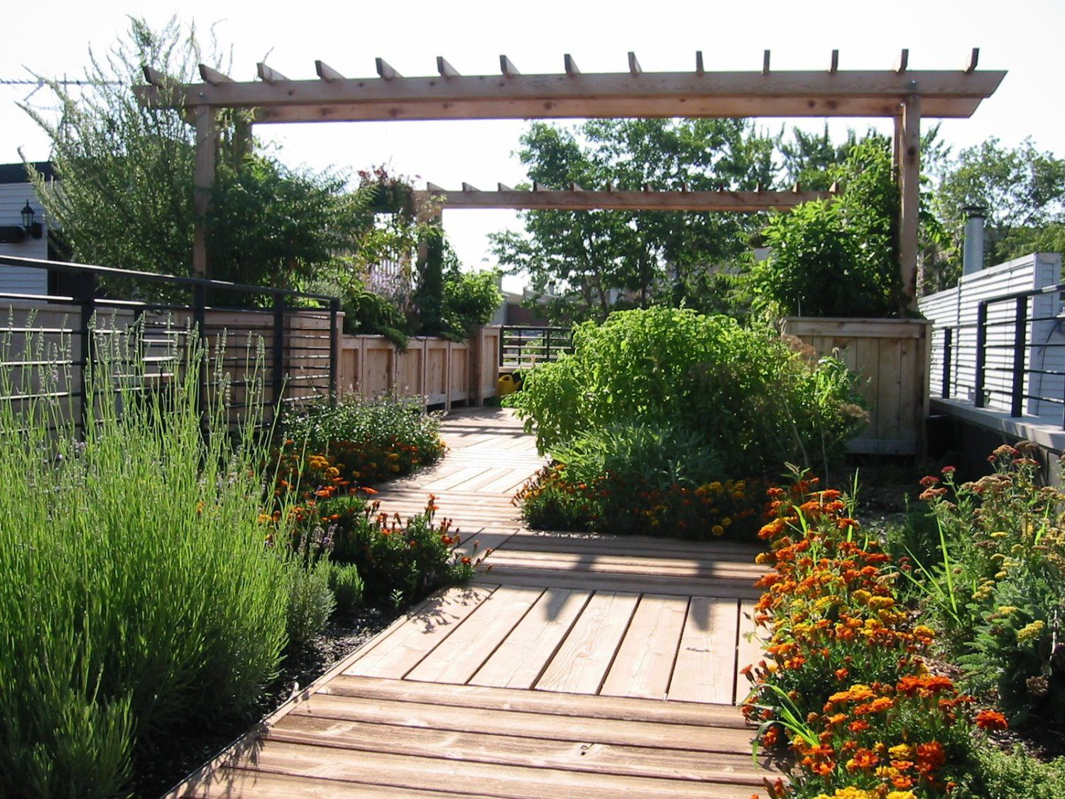 Rooftop garden john beaudry landscape design for Rooftop garden designs