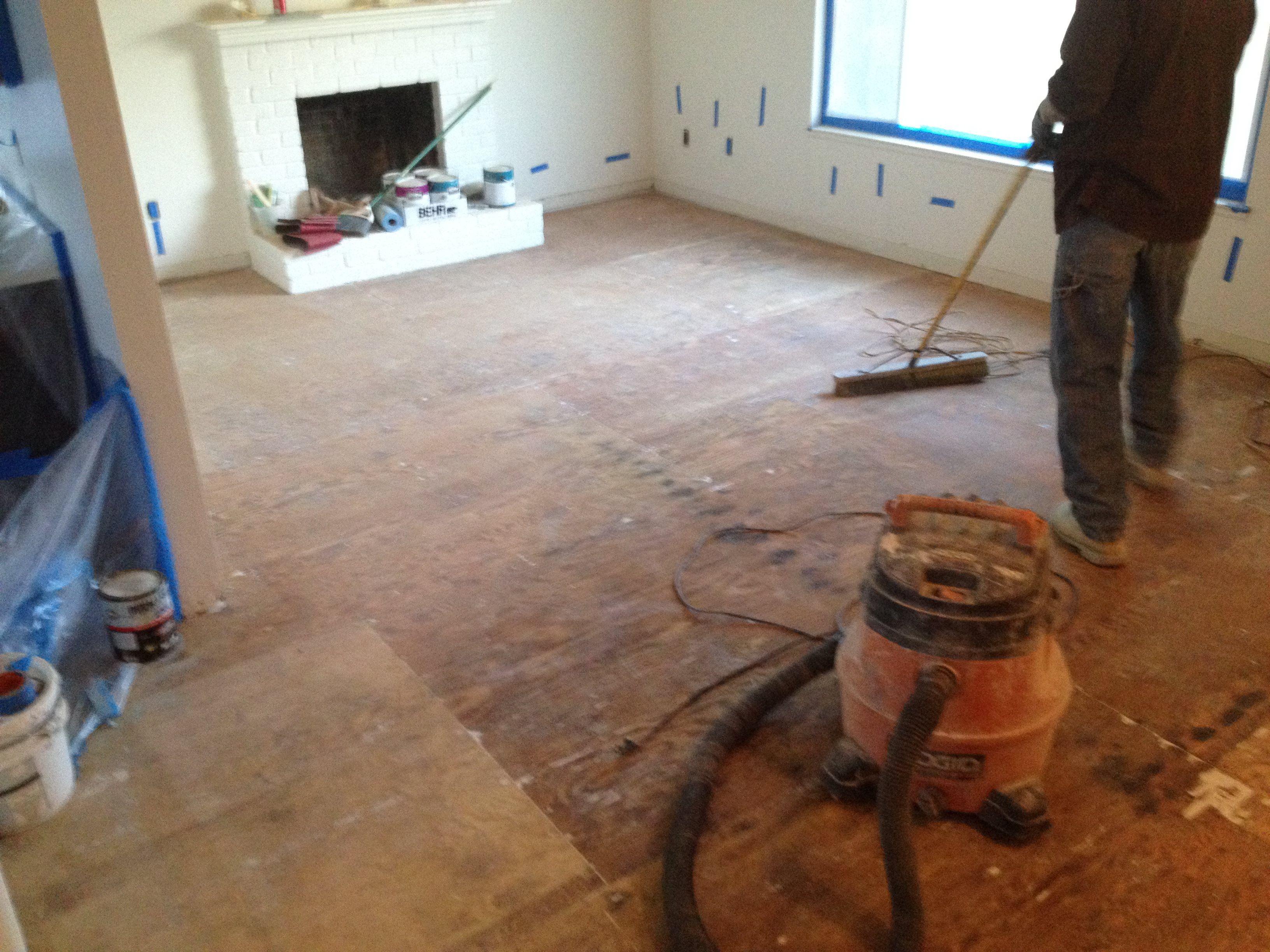 How to seal concrete floor from pet odor gurus floor for How to seal concrete floor