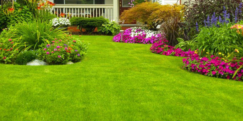 memo s landscaping and lawn care is locally owned and operated with